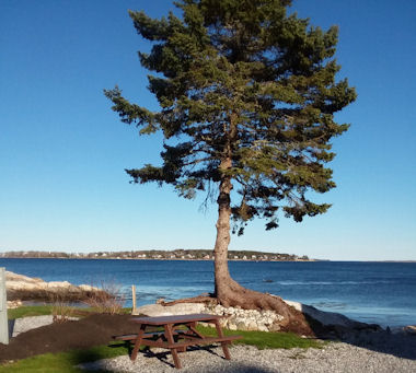 Seasonal RV site by the ocean at Gray Homestead Camping near Boothbay Harbor, Maine