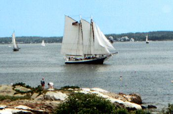 Watch the windjammer parade from Gray Homestead Camping